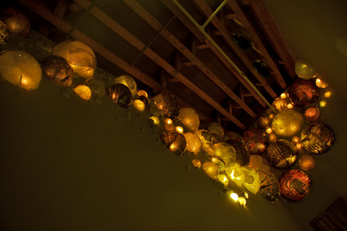 grimanesa amoros terrarium lighting installation