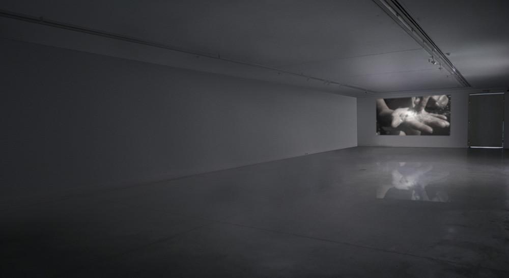 grimanesa amoros punctum contra punctum II video installation
