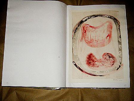 grimanesa amoros book project 2001