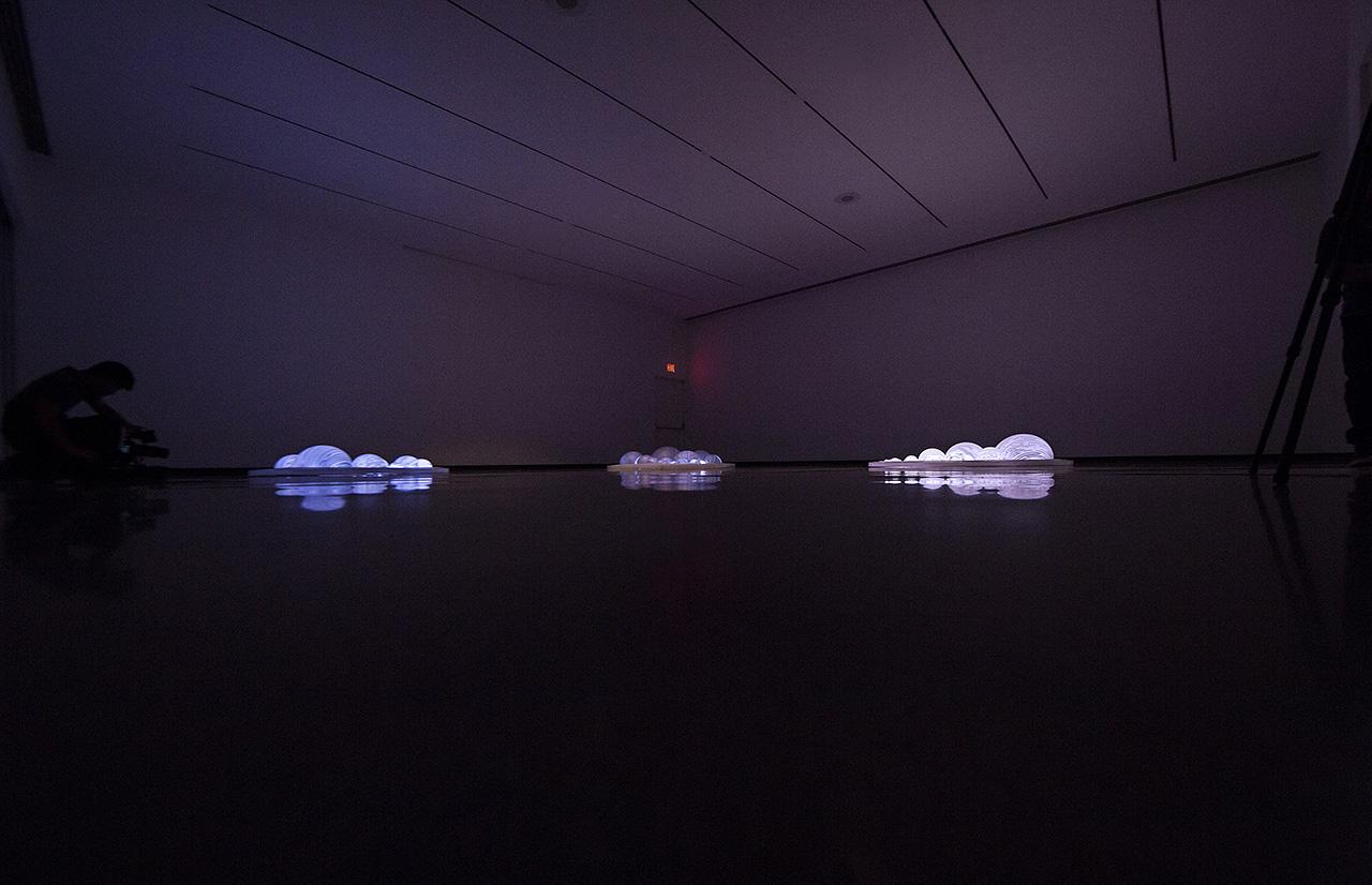 Grimanesa-amoros-katonah-museum-02 3