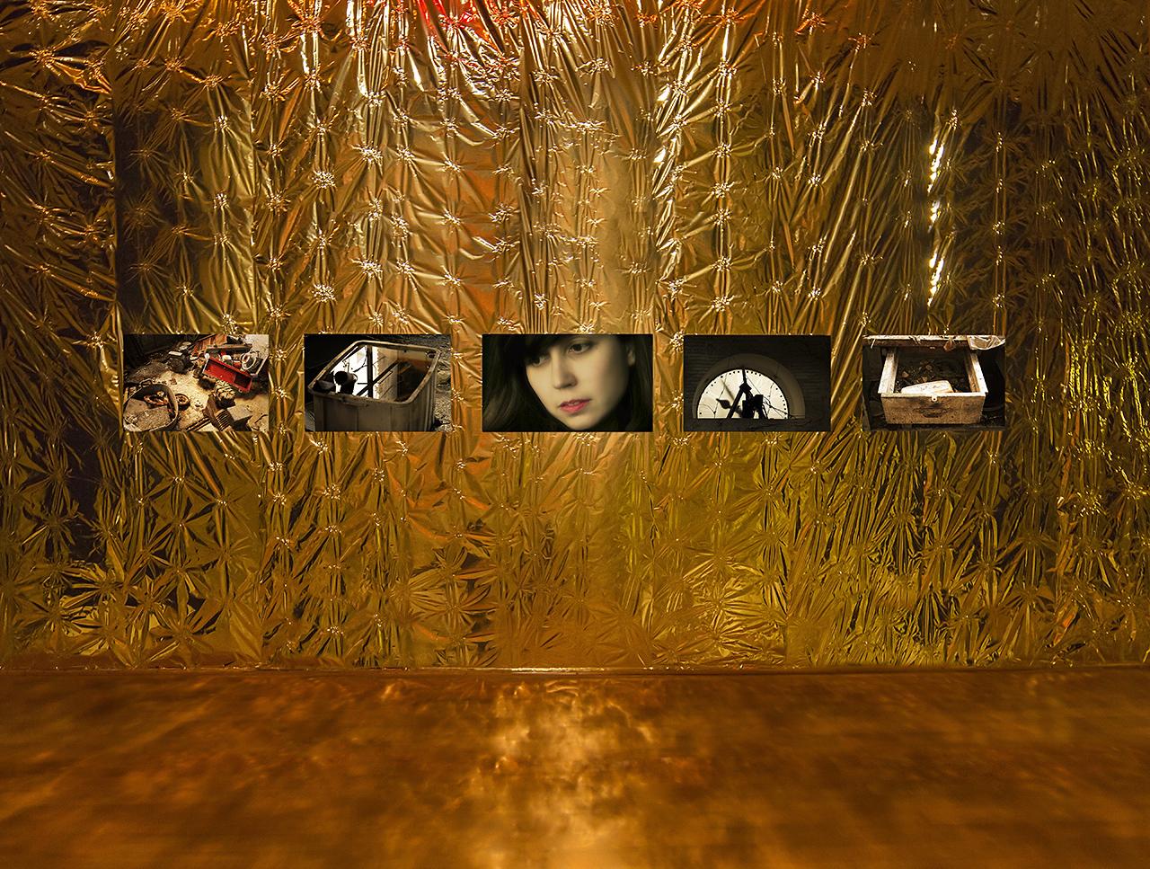 Grimanesa Amoros Ocupante Gold Room 07 Extended