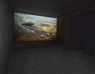 LIGHT BETWEEN THE ISLANDS | Litvak Gallery MIRANDA Video Room | Tel Aviv, Israel 2013