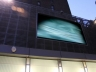 The Big Screen Project | Outdoor Site-Specific Videos The Big Screen Project | New York, NY 2010-2011