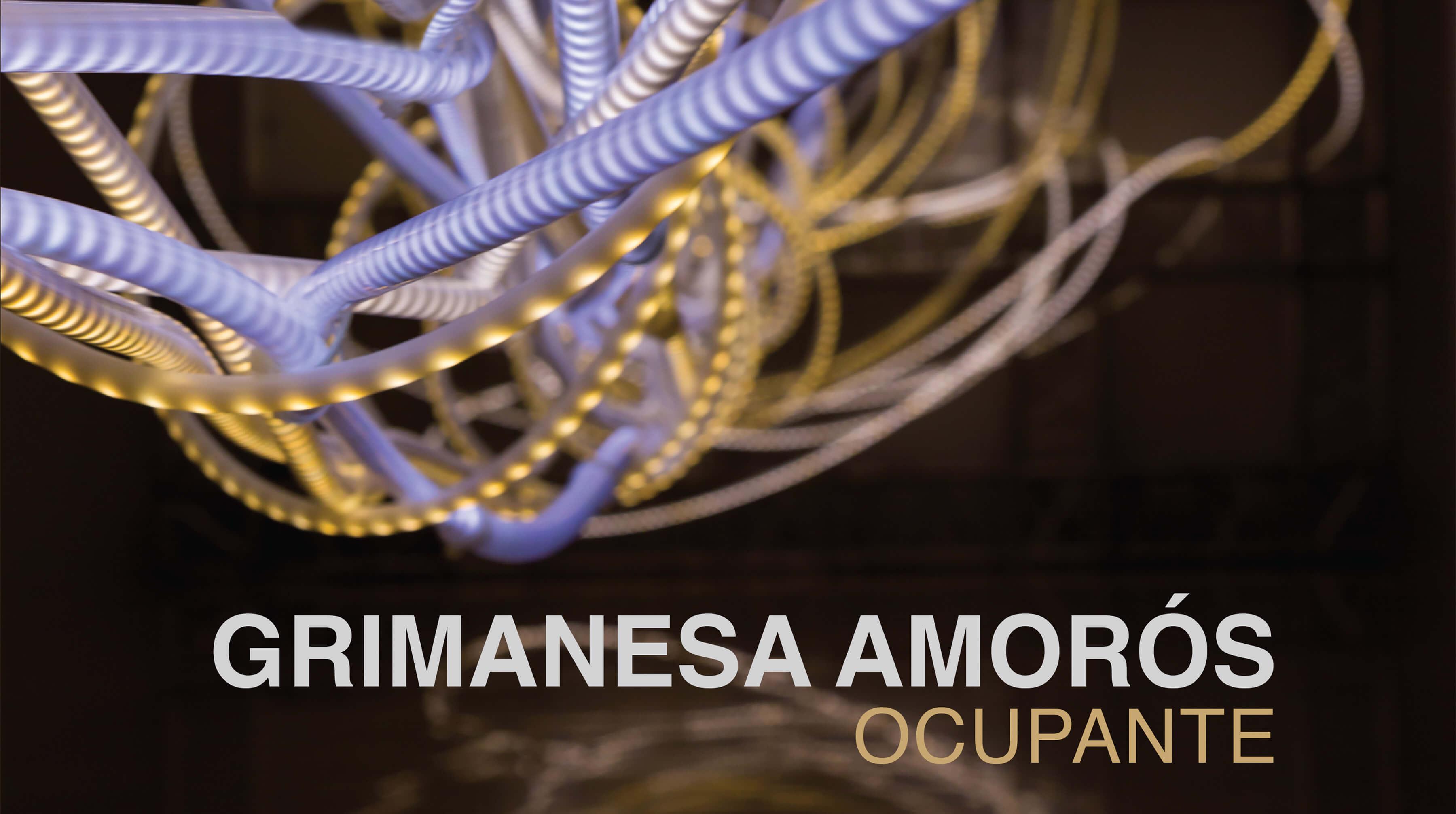grimanesa amoros ocupante hirmer 3D render catalogue front cover