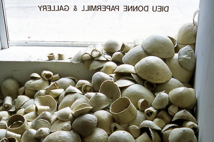 grimanesa amoros Art Museum of Americas