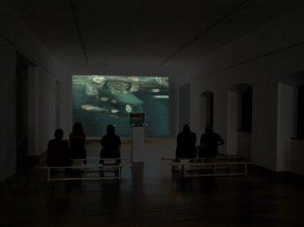 grimanesa amoros TINA B. Contemporary Art  Festival