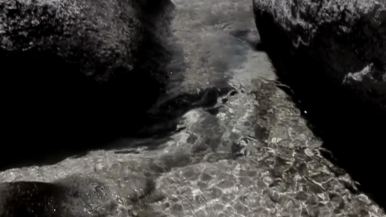 amoros-Reflection-Still-3