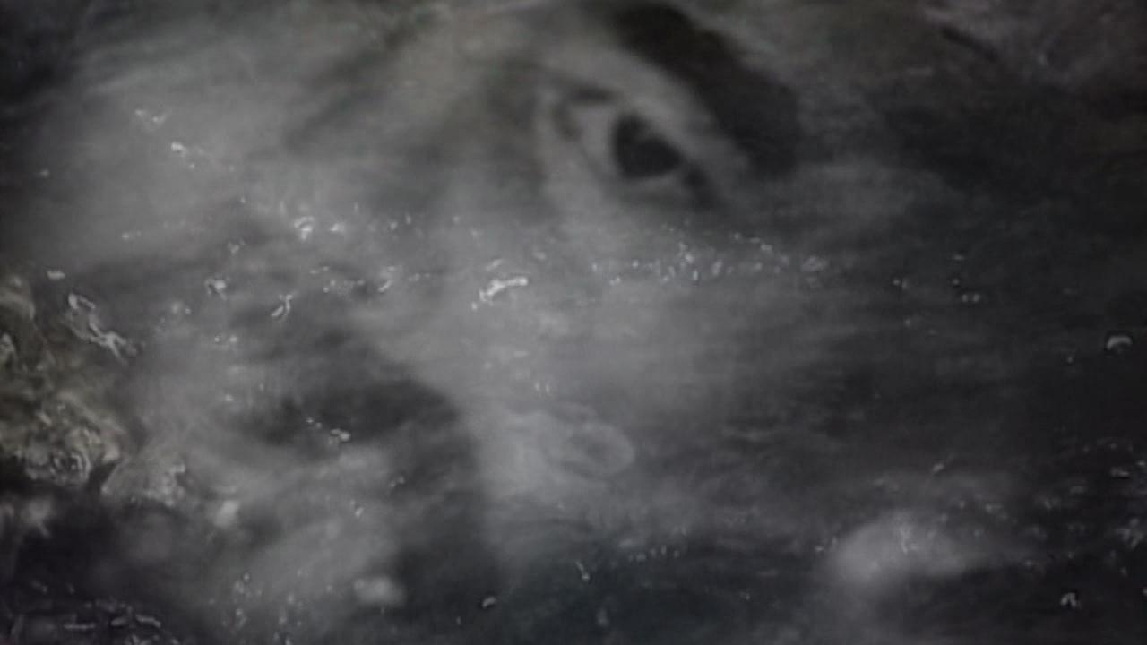 grimanesa amoros REFLECTION video installation