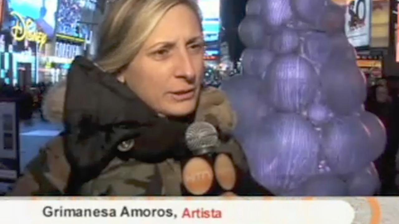 grimanesa amoros interview HITN en foco