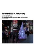 grimanesa amorso uros house Times Square The Armory Show