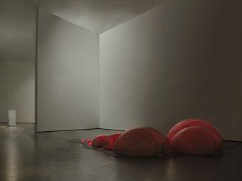 grimanesa amoros Today Art Museum