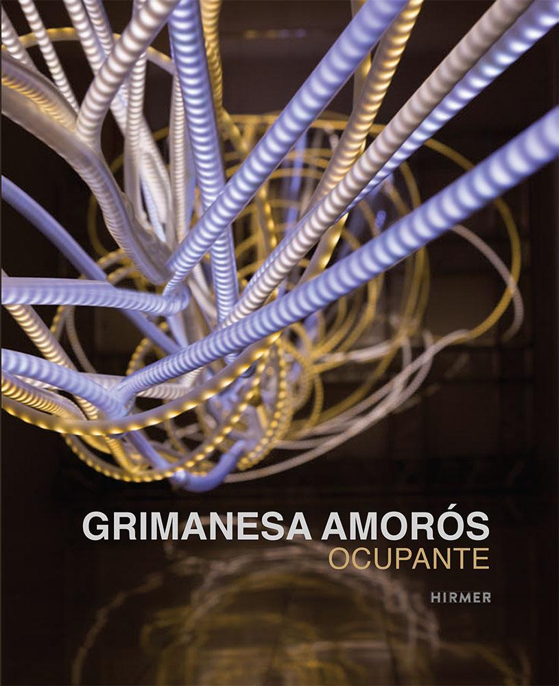 grimanesa amoros ocupante catalogue published by hirmer